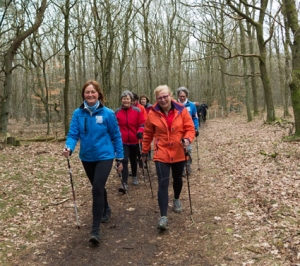Nordic Walking Zuidwal